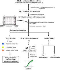 Rca Flow Chart Flow Chart Describing The Robotized Cellular Assay Rca