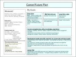 Improvement Plans Templates Financial Improvement Plan Template Apvat Info