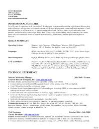 Summarize Skills And Qualifications Sample Resume Summary Of