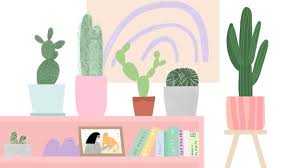 Houseplant Hacks Everything You Need To Know About Your Cactus Grazia