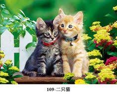 sweet cat love. Plain Cat Two Sweet Cats In Love  Cat U0026 Dog Wall Decor PictureCrystal Gifts Intended Sweet Love T