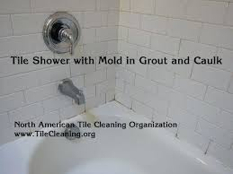 how to clean bathroom shower tile grout cleaning mold in shower tile and need a week off clean bathroom tile grout bleach