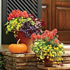 15 DIY How To Make Your Backyard Awesome Ideas 5  Front Doors Container Garden Ideas For Fall