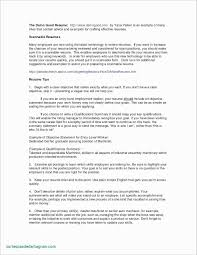 42 Luxury Technical Support Resume Format Awesome Resume Example