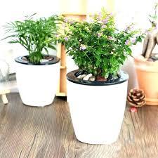 garden pots 5 gallon pot planters self watering plant planter bucket growing tomatoes in buckets upside down