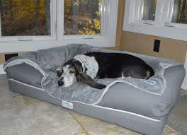 Best for Goldilocks dogs (a just-right bed, at a just-right price)