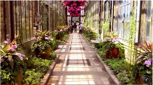 Small Picture Worlds Most Beautiful Garden Cinematic Video Longwood Gardens