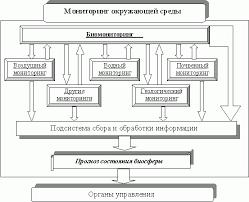 Глава Экологический мониторинг и биоиндикация Определения и  Подсистемы экологического мониторинга
