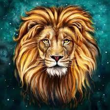 New Wallpaper Hd Lion 3d