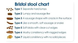 Bristal Stool Chart Lifewinner Info