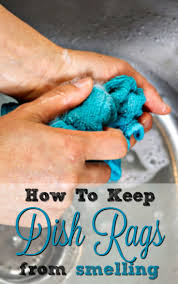 Whether you're tired of your dish rag smelling by the end of the day