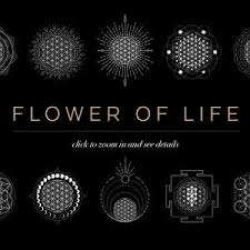 Skybox Creative Flower Of Life Vector Logo Bundle