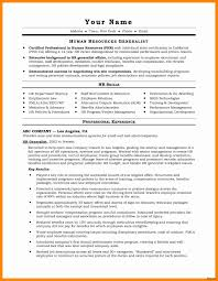 Format Of A Professional Resume Best Resume For It Job Unique Best