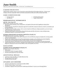 Executive Classic Format Resume Template Word
