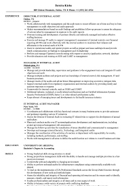 It Internal Audit Resume Samples Velvet Jobs