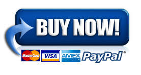 Image result for paypal buy now buttons with credit card