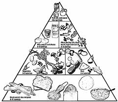 Healthy Food Pyramid Coloring Pages Food