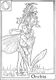 Cool Flower Fairies Coloring Pages From Pages And More Free