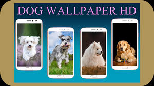 Dog Wallpaper HD for Android - APK Download
