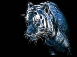 49+] 3D Tiger Wallpaper on WallpaperSafari