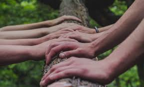 Why teambuilding and teamwork go hand in hand | The Team Building Directory