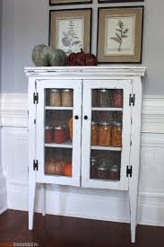 Jelly Cabinet { Free DIY Plans