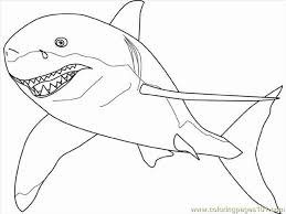 Small Picture Great White Shark Coloring Page Free Shark Coloring Pages