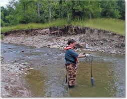 Dissolved Oxygen And Water