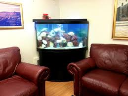 Where To Put Fish Tank In Living Room Centerfieldbar Com