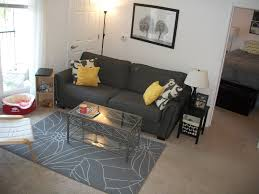 Top Living Room Themes For College Students With F X - College apartment living room