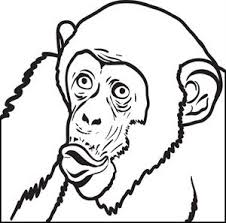 Small Picture 12 FREE Monkeys Coloring Pages for Kids Printable Coloring Sheets