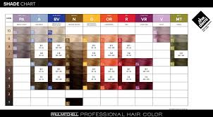 Paul Mitchell The Demi Shade Chart Peewees Burgess Hill