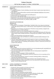 Scheduler Resume Sample Lead Scheduler Resume Samples Velvet Jobs 20