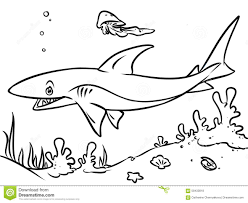Small Picture Coloring Page Ocean Shark Contour Illustration Stock Illustration