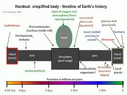 Time Line Forms Hands On Activity Fitting The Earths Timeline Onto Your