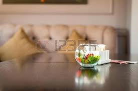 plants in glass bowl decorative colorful plants in glass bowl stock photo plants in large glass plants in glass bowl