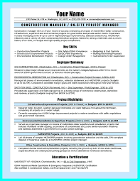 Resume It Infrastructure Manager Resume