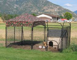 outdoor dog pen cover 10 10