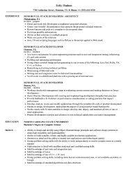 Full Resume Sample Senior Full Stack Developer Resume Samples Velvet Jobs 13