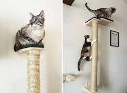 wall mounted cat furniture. Plain Mounted Another Beautiful Cardboard Scratcher From The Folks At Catissa Cat Trees  Also Looks Like A Piece Of Modern Sculpture The Rounded Surface Is Very  To Wall Mounted Furniture E