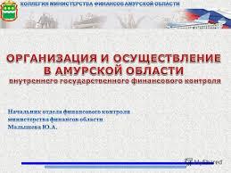 Презентация на тему Виды государственного муниципального  2 Виды государственного муниципального финансового контроля Органы