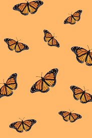 Aesthetic Butterfly Computer Background ...
