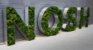 nosh moss sign letters