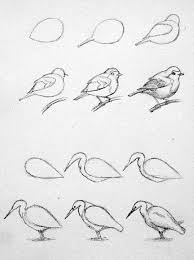 イラストおしゃれまとめの人気アイデアpinterest さつき 鳥の
