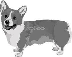 コーギーの白黒モノクロでかっこいい犬の無料イラスト68019 素材good