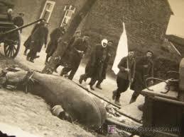 Resultado de imagen de rendicion de alemania