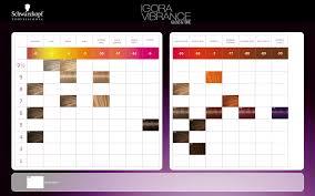 Igora Vibrance Shade Chart Schwarzkopf Professional Igora Vibrance Gloss Tone Color