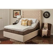 Blissful Nights 11 in. Dahlia Queen Memory Foam Mattress and Adjustable  Base Set