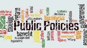 النظام السياسي والسياسة العامة