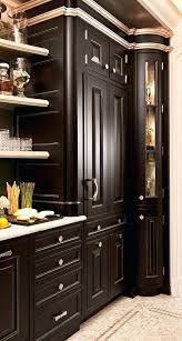 kitchen cabinet skins for kitchen cabinets unique best inspiration traditional images on of